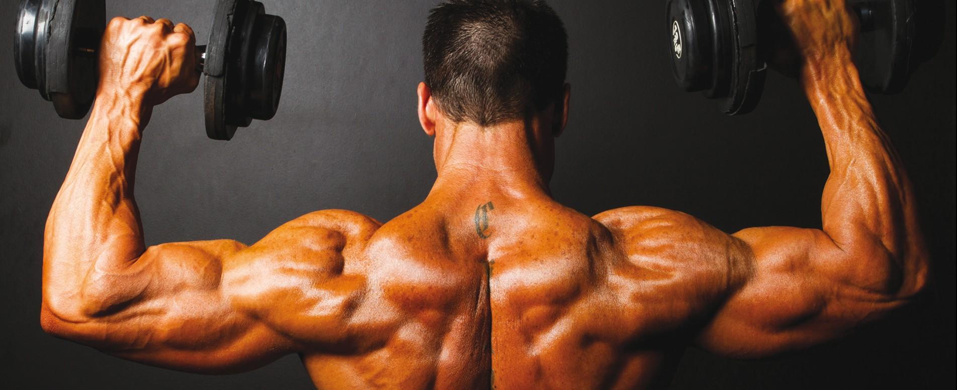 Nutrition proteine sport